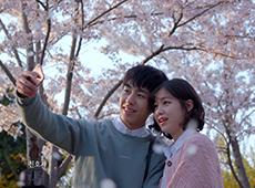 천안시 봄 캠페인