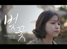 천안시 웹무비_벚꽃비기닝